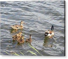 A Family Affair Acrylic Print
