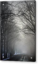 A Few Of My Favorite Things Trees In Fog Acrylic Print by Penny Hunt