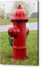 Acrylic Print featuring the photograph A Fire Hydrant by Courtney Webster