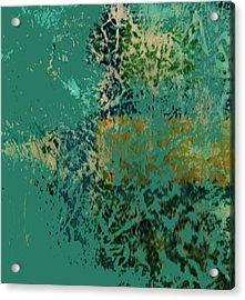 A Fish In A Dream Acrylic Print by Anne-Elizabeth Whiteway