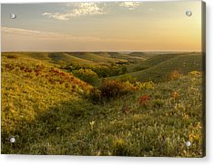 A Flint Hills View Acrylic Print by Scott Bean