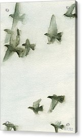 A Flock Of Pigeons 2 Watercolor Painting Of Birds Acrylic Print