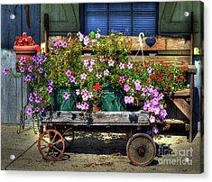 A Flower Wagon Acrylic Print by Mel Steinhauer