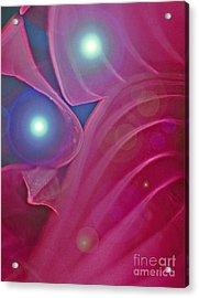 A Flutter Of Fairies Acrylic Print by First Star Art
