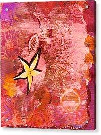 A Flying Star Flower Acrylic Print by Anne-Elizabeth Whiteway