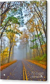 A Foggy Drive Into Autumn - Blue Ridge Parkway Acrylic Print