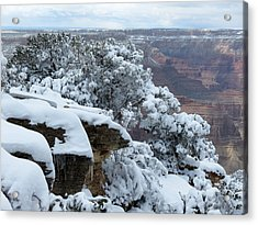 A Foot At The Canyon Acrylic Print by Laurel Powell