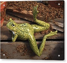 Acrylic Print featuring the photograph A Frog's Life by Patrice Zinck