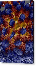 Acrylic Print featuring the digital art A Garden In The Afterlife by Steed Edwards