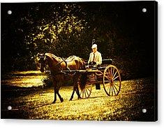 A Gentlemans Ride Acrylic Print by Karol Livote