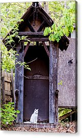 A Ghost In The Potting Shed Acrylic Print by John Carroll