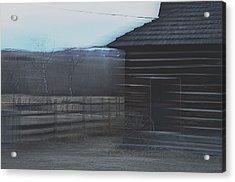 A Glance Back 2 Acrylic Print