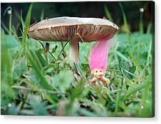 A Gnome And His Mushroom Acrylic Print by Meir Ezrachi