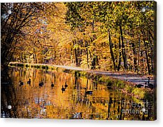 A Golden Afternoon Acrylic Print