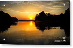 A Golden Moment Acrylic Print