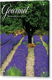A Gourmet Cover Of A Lavender Field Acrylic Print by Julian Nieman