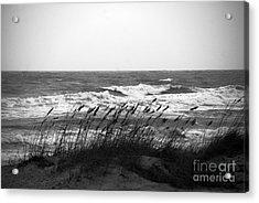 A Gray November Day At The Beach Acrylic Print by Susanne Van Hulst