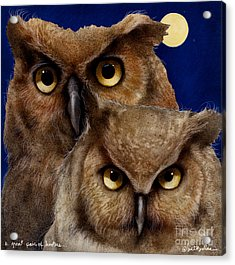 A Great Pair Of Hooters... Acrylic Print by Will Bullas