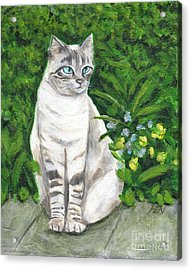 A Grey Cat At A Garden Acrylic Print