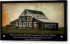 A Handful Of Aggies Acrylic Print by Stephen Stookey