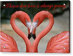 A Heart That Loves Is Always Young Acrylic Print