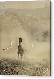 A Herd Of Camarasaurus Dinosaurs Acrylic Print by Jan Sovak