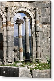 A Home In Ruins Acrylic Print by Sophie Vigneault