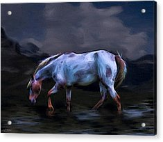 A Horse Of Many Colors Acrylic Print by Tyler Robbins