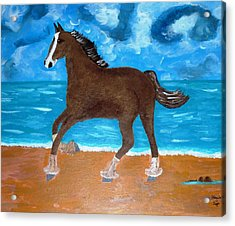 A Horse On The Beach Acrylic Print