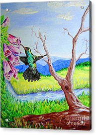 A Hummingbirds Day Acrylic Print