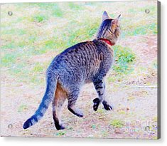 A Hunting We Will Go Acrylic Print by Judy Via-Wolff