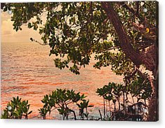 Acrylic Print featuring the photograph A Keys Sundown by Joetta West