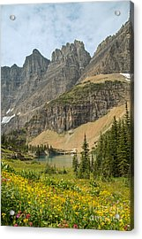 A Lake Near Iceberg Lake Along The Trail Acrylic Print by Natural Focal Point Photography