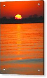 A Last Sunset Acrylic Print by Karol Livote