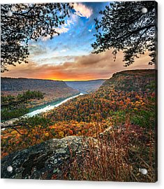A Late Autumn View Acrylic Print by Steven Llorca