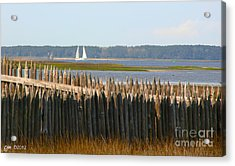 Acrylic Print featuring the photograph A Lazy Morning Along The Mighty Cape Fear River by Phil Mancuso