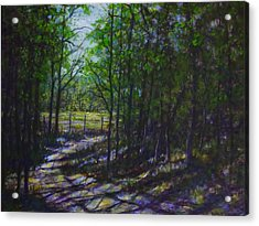 A Lazy Walk Acrylic Print by Larry Palmer