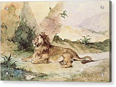 A Lion In The Desert Acrylic Print by Ferdinand Victor Eugene Delacroix