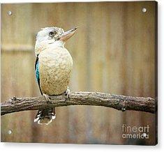 A Little Bird Told Me Acrylic Print