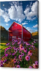 A Little More Country Acrylic Print