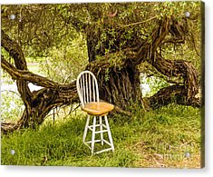A Little Solitude Acrylic Print by Kate Brown