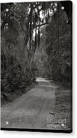 A Lonely Road Acrylic Print by Debbie Bailey