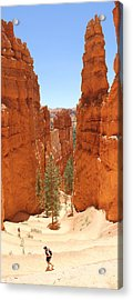 A Long Way To The Top Acrylic Print by Mike McGlothlen