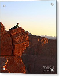 A Look At The Canyon Acrylic Print by Dipali S