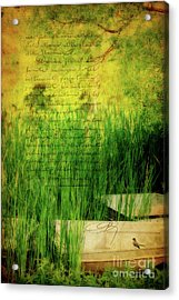 A Love Letter From Summer Acrylic Print by Lois Bryan