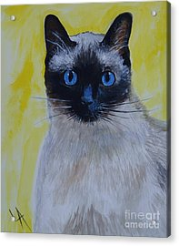 A Loving Siamese Acrylic Print by Leslie Allen