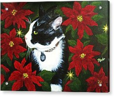 Tuxedo Cat Trouble  Acrylic Print