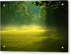 A Magical Place Acrylic Print by Valarie Davis
