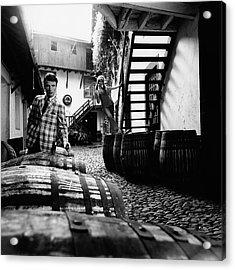 A Male Model Posing By Wine Barrels Acrylic Print