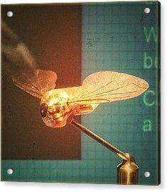 A #mechanical #fly From A #birmingham Acrylic Print